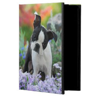 Het Leuke Puppy van de Hond van Boston Terrier,
