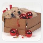 Het leuke puppy van Labrador met Vierkante Sticker