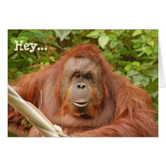 Het leuke wenskaart van de orangoetanverjaardag
