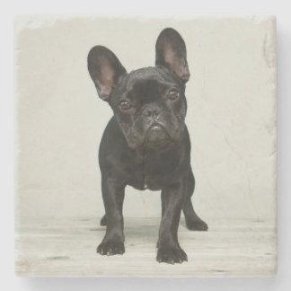 Het leukste Franse Puppy van de Buldog Stenen Onderzetter