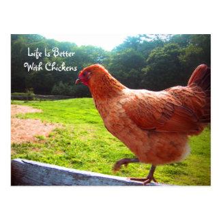 Het leven is Beter met Kippen Briefkaart