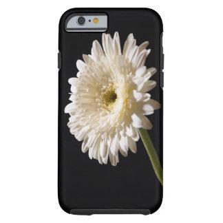 Het madeliefje van Gerbera op zwarte achtergrond Tough iPhone 6 Hoesje