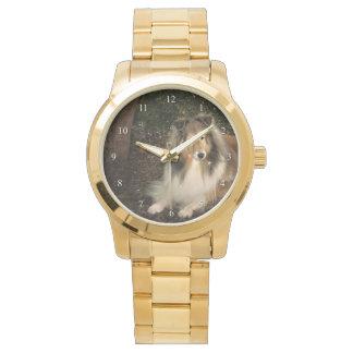 Het Magische Horloge van Sheltie