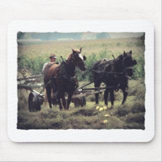 Het maken van Hooi met Paarden Muismatten