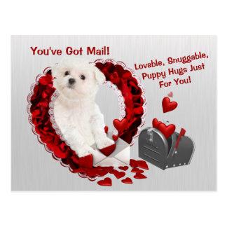 Het Maltese Jong u heeft de Omhelzingen Valentijn Briefkaart