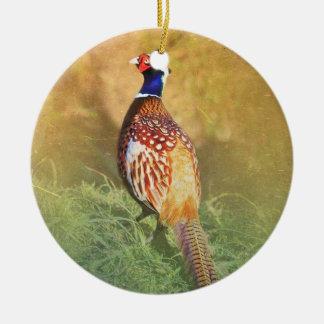 Het mannelijke Ornament van de Fazant