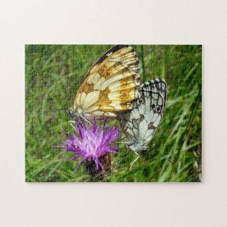 Het marmer Witte Raadsel van de Foto van Vlinders Puzzel