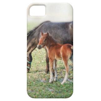 Het miniatuur Veulen van het Paard - Aangepast Barely There iPhone 5 Hoesje
