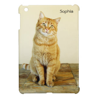 Het MiniHoesje van de Kat van de Gestreepte kat Hoesjes Voor iPad Mini