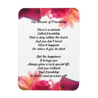 Het mirakel van de Magneet van de Vriendschap