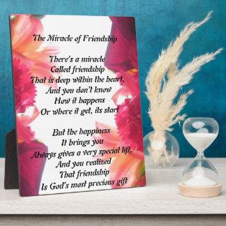 Het mirakel van de plaque van de Vriendschap Fotoplaat