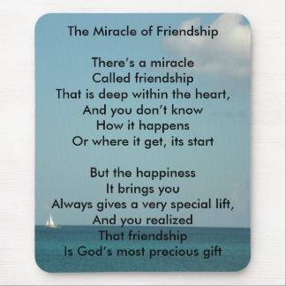 Het mirakel van Vriendschap Muismat
