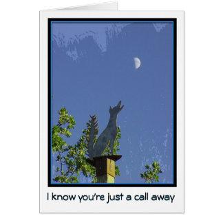 Het missen van u--Een enkel Vraag weg--Coyote en Briefkaarten 0