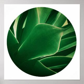 Het modieuze Heldergroene Succulente Poster van