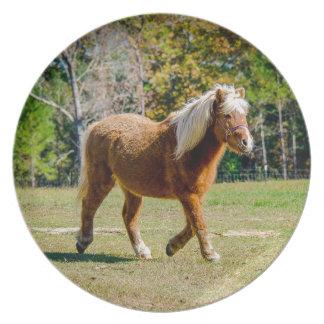 Het mooie Pony van Shetland Diner Borden