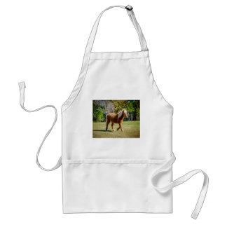 Het mooie Pony van Shetland Standaard Schort