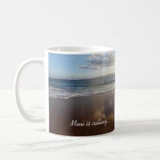 Het mooie Strand Maui roept Mok