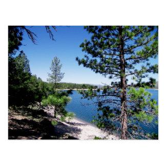 Het Nationale Bos van Tahoe - Californië Briefkaart