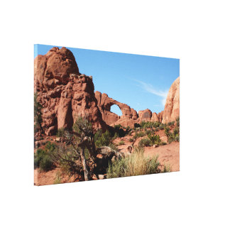 Het Nationale Park van bogen, Utah, de V.S. Canvas Print