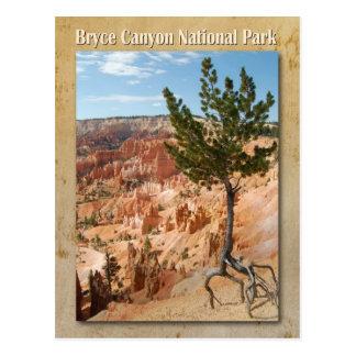Het Nationale Park van de Canion van Bryce, Utah Briefkaart