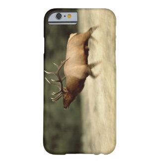 Het Nationale Park van de Meren van Waterton, Barely There iPhone 6 Hoesje
