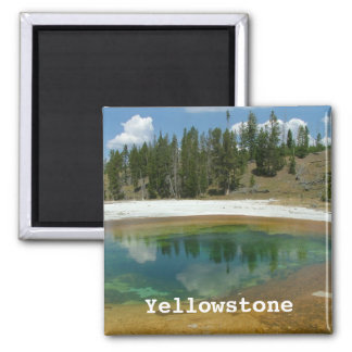 Het Nationale Park van Yellowstone Magneet