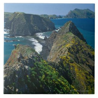 Het Nationale Zuidelijke Park van de Eilanden van Keramisch Tegeltje