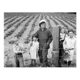 Het Nieuwe Boerderij van de Familie van Arnold - Briefkaart