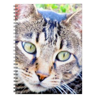 Het Notitieboekje van de kat Ringband Notitieboek