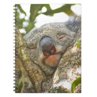 Het Notitieboekje van de koala Ringband Notitieboek