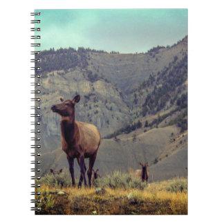 Het Notitieboekje van de Kudde van elanden Ringband Notitieboek