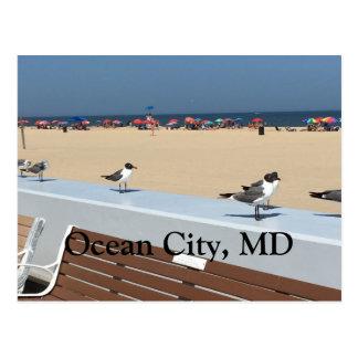 Het oceaan Strand van de Stad, M.D. met Vogels Briefkaart