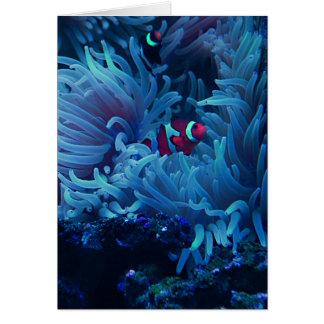 Het onderzeese Leven Kaart