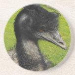 Het Onderzetter van de emoe