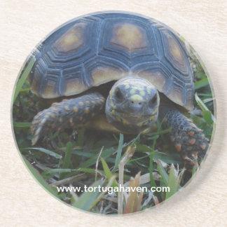 Het Onderzetter van de Schildpad van de rood-voet
