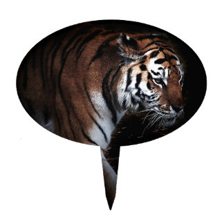 Het onderzoek van tijgers cake toppers