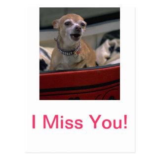 Het ontschorsen Chihuahua Briefkaart