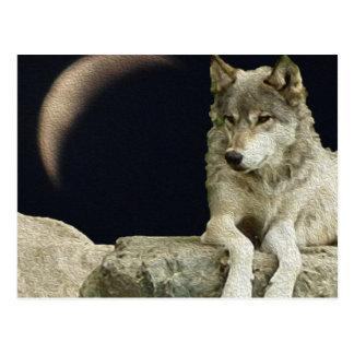 Het Ontspannen van de wolf Briefkaart
