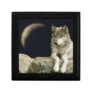 Het Ontspannen van de wolf Decoratiedoosje