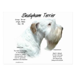 Het Ontwerp van de Geschiedenis van Terrier van Briefkaart