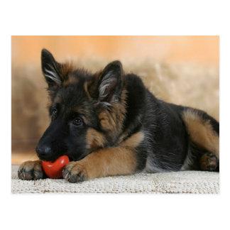Het Ontwerp van de Hond van de Duitse herder Briefkaart