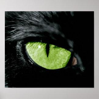 Het oog van de kat poster