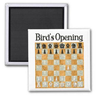 Het Openen van de vogel Vierkante Magneet
