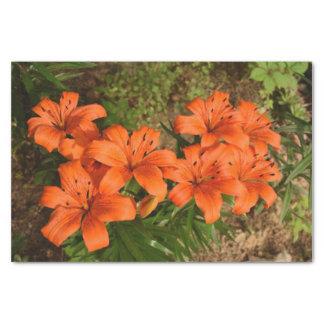 Het oranje Papieren zakdoekje van de Bloem Tissuepapier