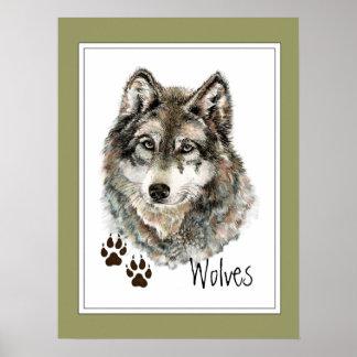 Het originele Dier van de Sporen van de Wolf van Poster