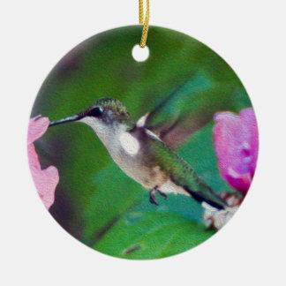 Het Ornament van de Kolibrie robijnrood-Throated