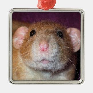 Het Ornament van de Rat van Dumbo