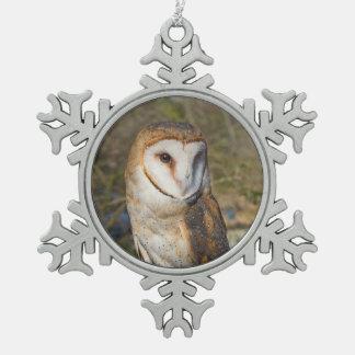 Het Ornament van de Uil van de sneeuwvlok
