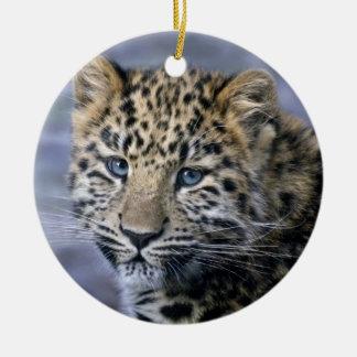 Het Ornament van de Welp van de luipaard