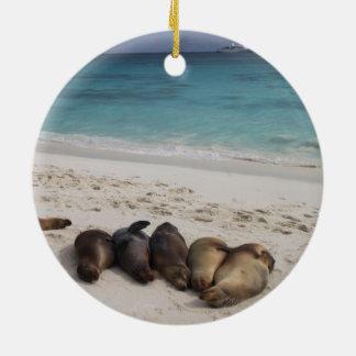 Het Ornament van de zeeleeuw